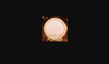 POUDRE SHINE-UP